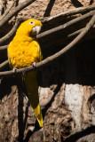 Bonito Iguaçu-423.jpg
