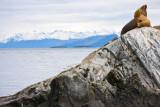 patagonia-387.jpg