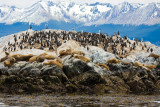 patagonia-394.jpg
