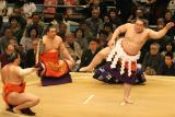 2005-03-Sumo Camp-071 copy.jpg