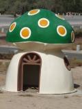 Green Toadstool House Mushrif Park Dubai.jpg