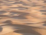 Sea of Sand Liwa Oasis.jpg