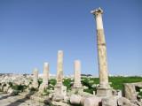 The Cardo Colonnaded Street 9 Jerash Jordan.jpg