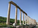 The Cardo Colonnaded Street 13 Jerash Jordan.jpg