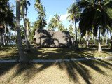 Palm trees and sunshine.