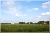Texel (NL)