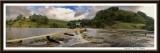 Curdies River 2010