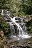 Liffy Falls.