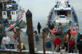 Crowded Dock