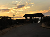 entrance to Mopani camp