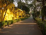 Mexico City neighborhoods