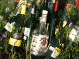 Liquor and Wine Bottles in the Grass
