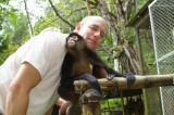 The Osa Wildlife Sanctuary - Spider Monkey