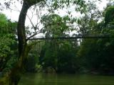 La Selva Bridge