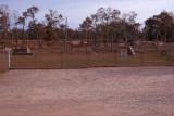 11-K9 Training Yard