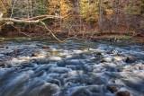 Tinkers Creek *.jpg