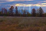 Spotlights Shining Down.jpg