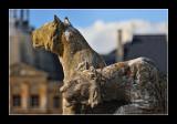 Vaux le Vicomte (EPO_4531)