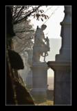 Versailles gardens (EPO_5664)