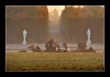 Versailles gardens (EPO_5626)