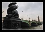 London (EPO_7114)