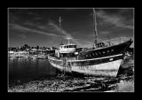 Chalutier abandonné à Camaret (EPO_9935)