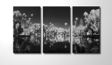 This image has been printed at 4'x8' for each part of the triptych, totally 12' wide by 8' high.