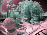 Fun with Infra-Red