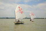 Optimist boats èolni_MG_9756-11.jpg