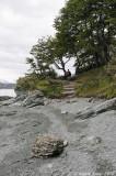 Tierra del Fuego National Park, Argentina