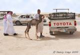 Saudi Arabia in 2009: Hofuf