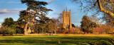 Church and cedar, Martock, Somerset