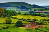 Farmland, near Shaftesbury, Dorset (1908)