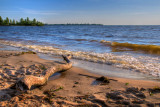Driftwood and beach, Chervona Sloboda