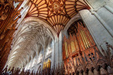 Organ pipes and ceiling, Winchester Cathedral