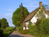 Thatched cottage, Wigborough (2623)
