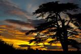 Sunset, Church Lane, Martock (5011)