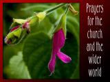 'Prayers' slide from the Kingston Maurwood series