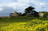 Bretagne - De l'ile de Bréhat à Morlaix - La cote de granite rose 2006