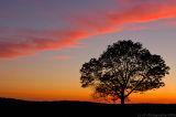 _JFF0978 Sunset clean Tiff.jpg