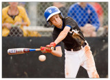 Little League Baseball/Softball