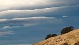 New Zealand Skies