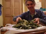 Me with a pile of coca leaves.  What?