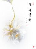 qinghua_pps