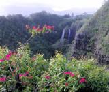 2008 Kauai Vacation