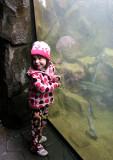 evie enjoys the fish
