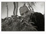 Morten  (behind a sheet of ice)
