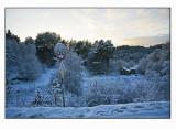 Winter light  # 2
