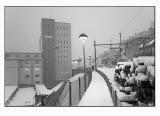 A snowy trip  6