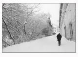 A snowy trip 21